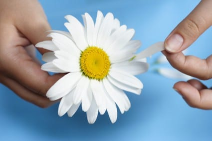 Hands with daisy