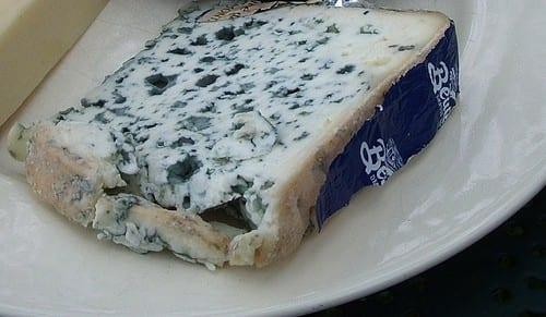 French cheese - Bleu d'Auvergne