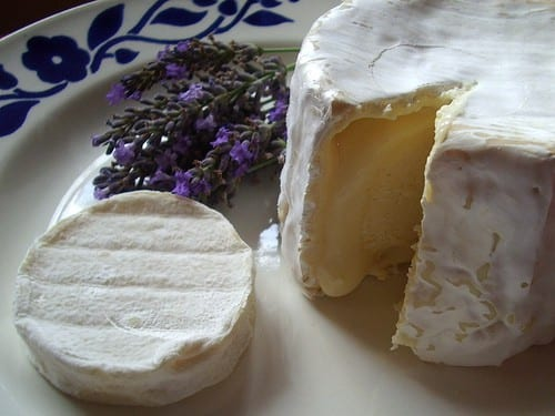 French cheese - Rocamadour and Chaource