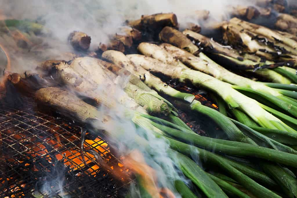 Calcots-Season-in-Spain