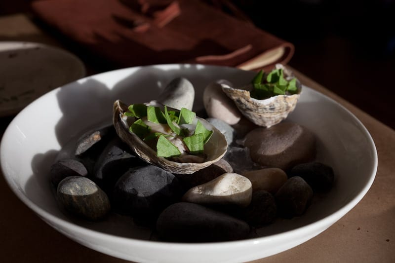 Pickled oyster with sorrel