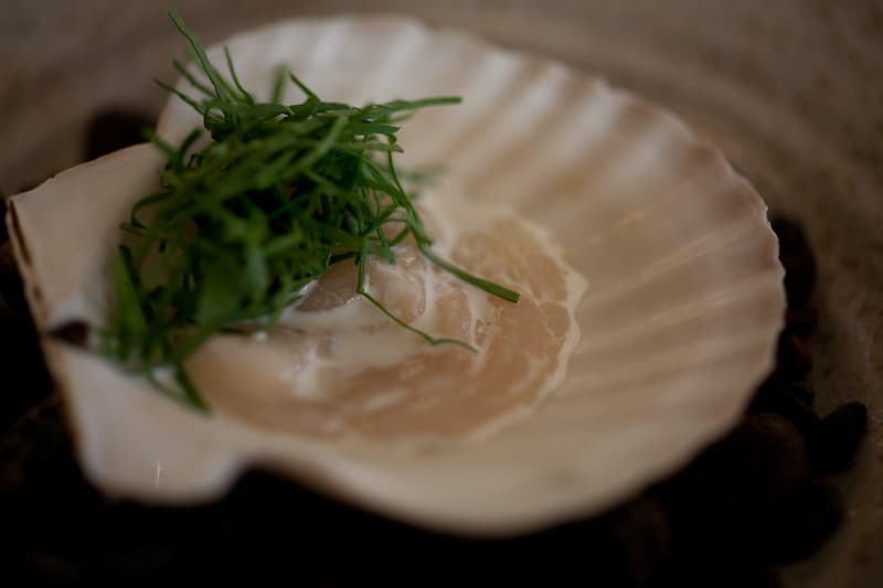 Fanny Bay scallop with arugula