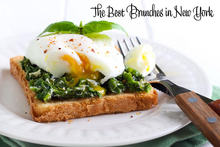 The Best Brunches in New York
