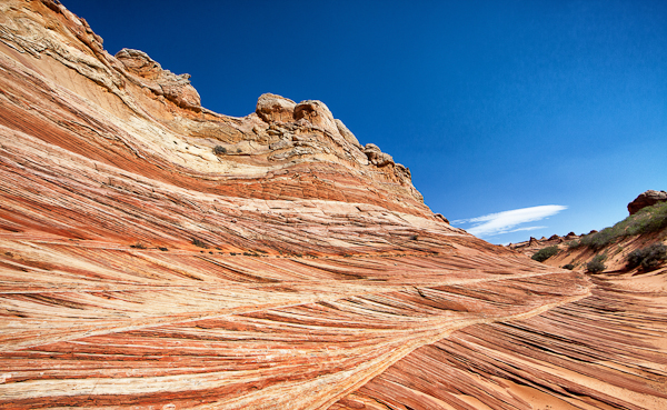Cottonwood Canyon in Coyote Buttes South.