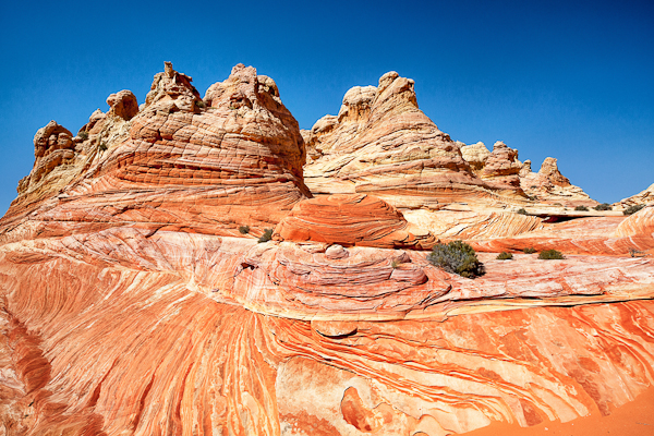 Cottonwood Canyon in Coyote Buttes South Arizona
