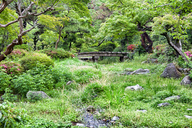 Green in the Todaiji Temple
