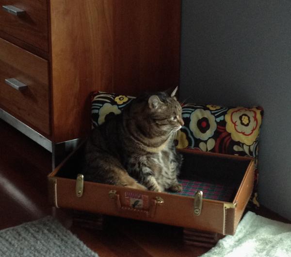 Jessica in her Atomic Attic Suitcase