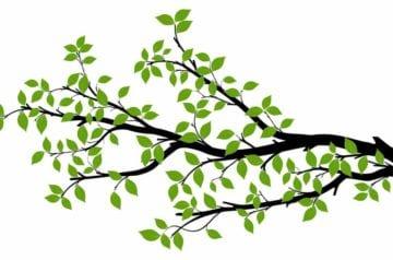 Blogging Tree