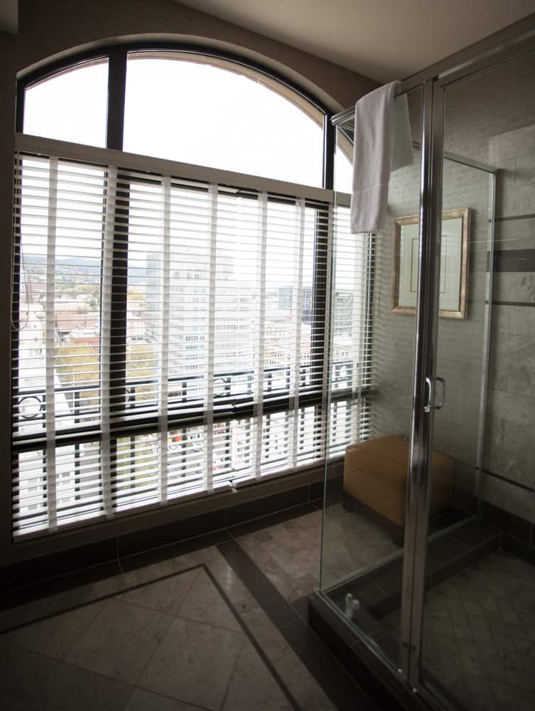 View from our Westin Portland shower