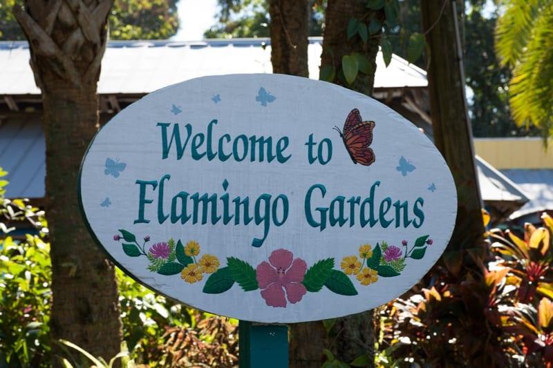 Everglades Holiday Park And Flamingo Gardens