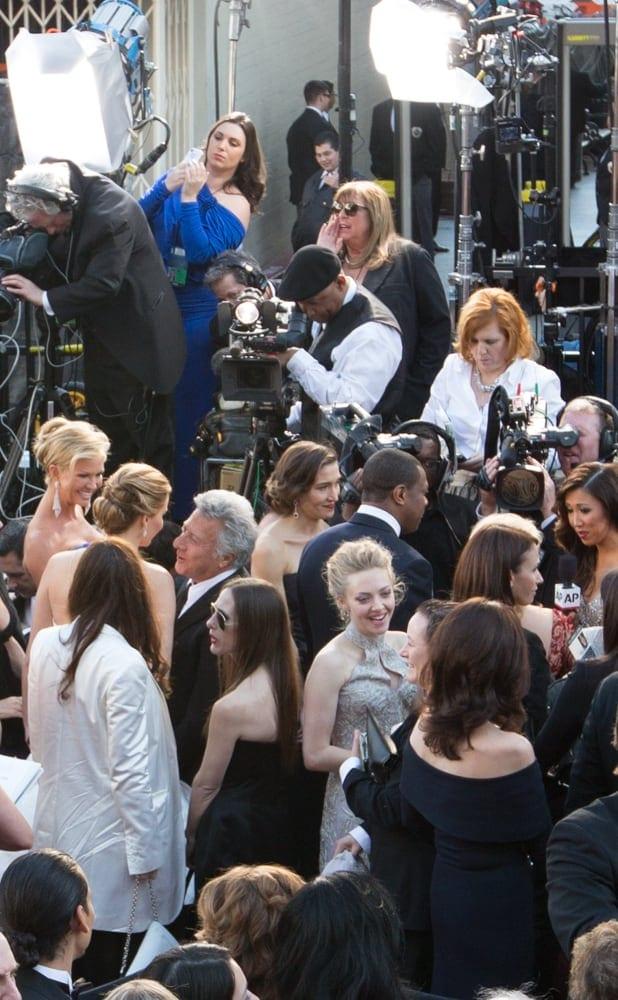 Amanda Seyfried on the red carpet