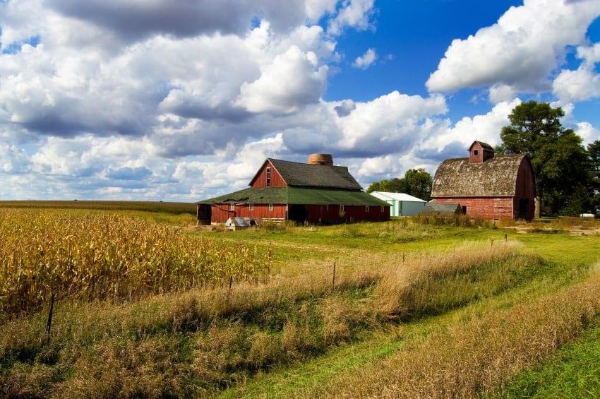 Sacramento Farm