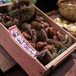 Japanese-Chestnuts-in-Kyoto