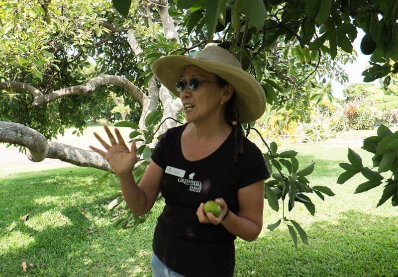 Greenwell-Farms-Tour-Guide-Keiko