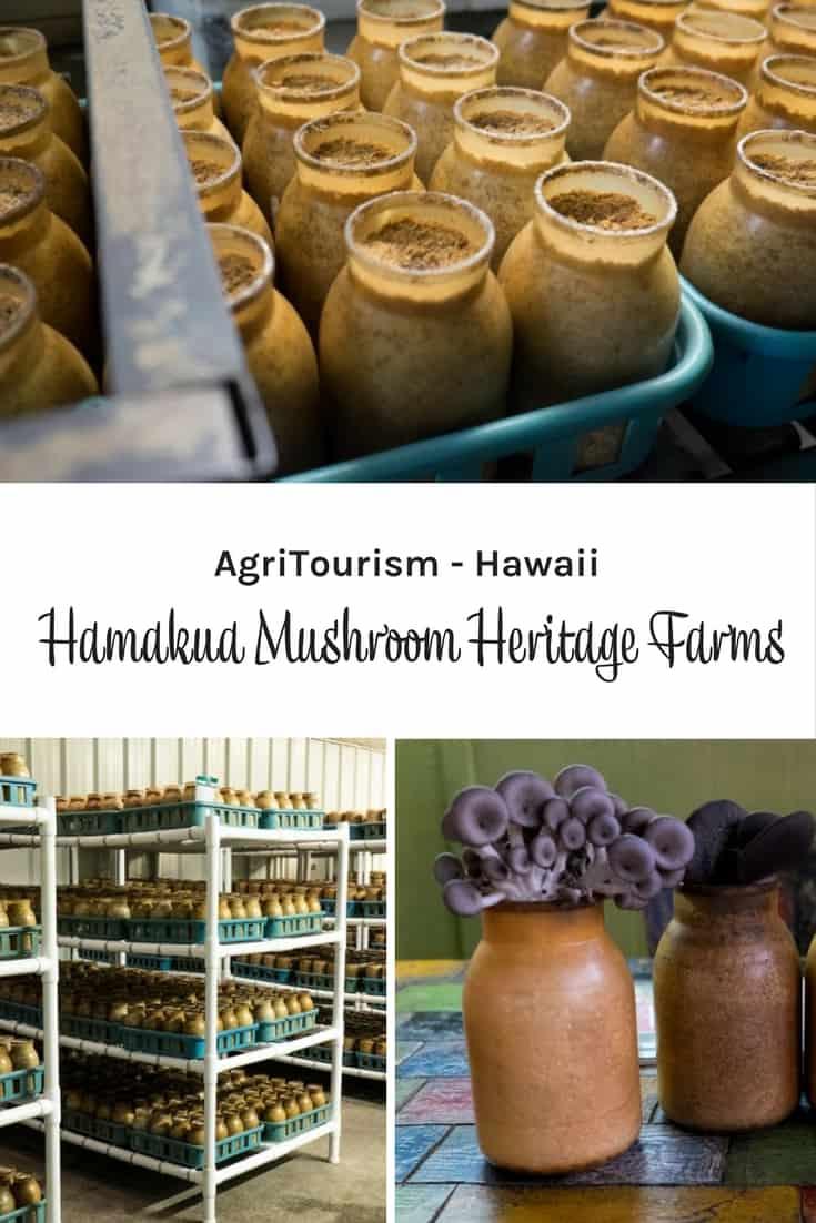 Hamakua Mushroom Heritage Farms