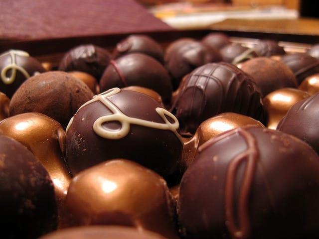 GODIVA-Chocolate-by-Remcat-WoofBC