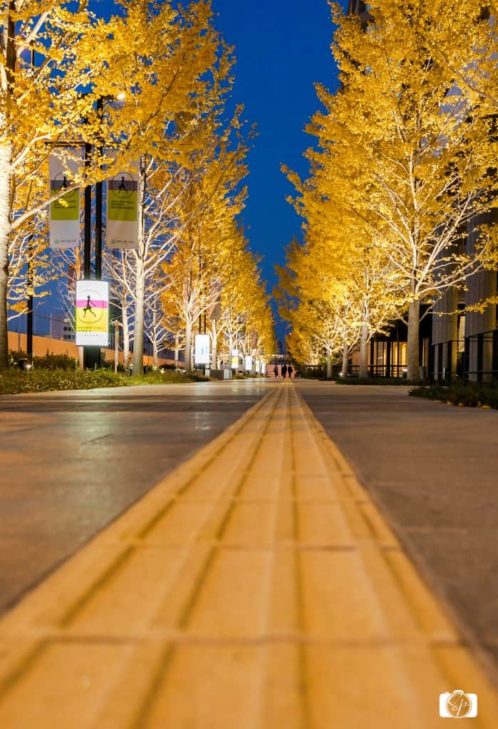 Osaka-Umeda-Sky-Building-After