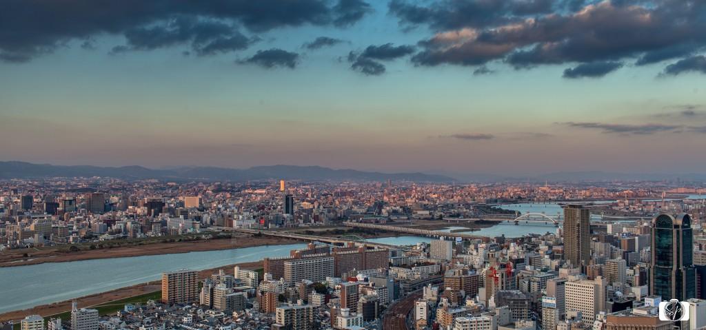 Osaka-Umeda-Sky-Building-View