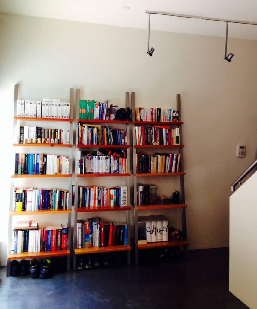 Misadventures-Shelves