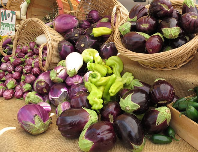 Food Blogger Kelly of Tasting Page Eggplants