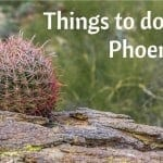 Seven Things to do in Phoenix