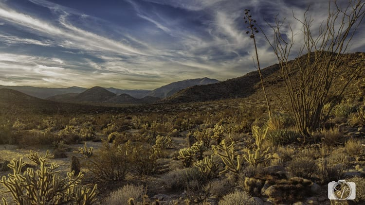 Little-Blair-Valley-ANZA-BORREGO-DESERT
