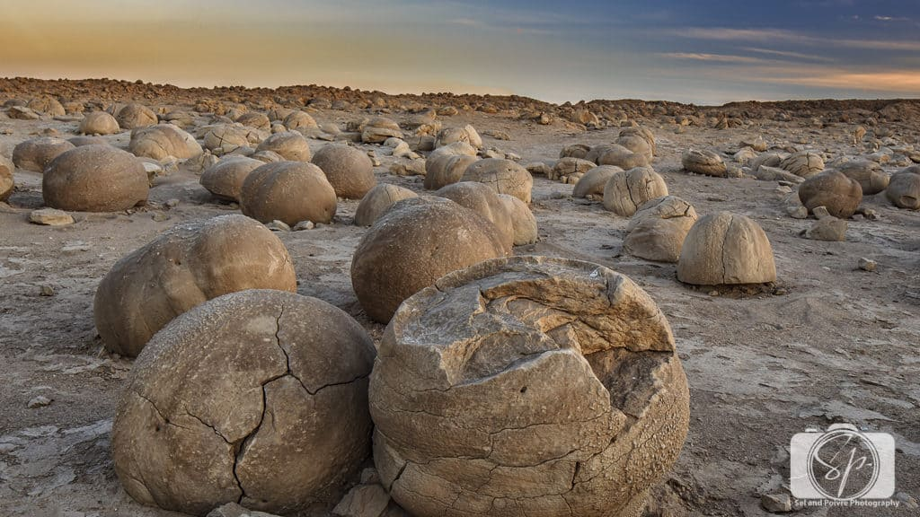 Pumpkin Patch_Borrego Springs California