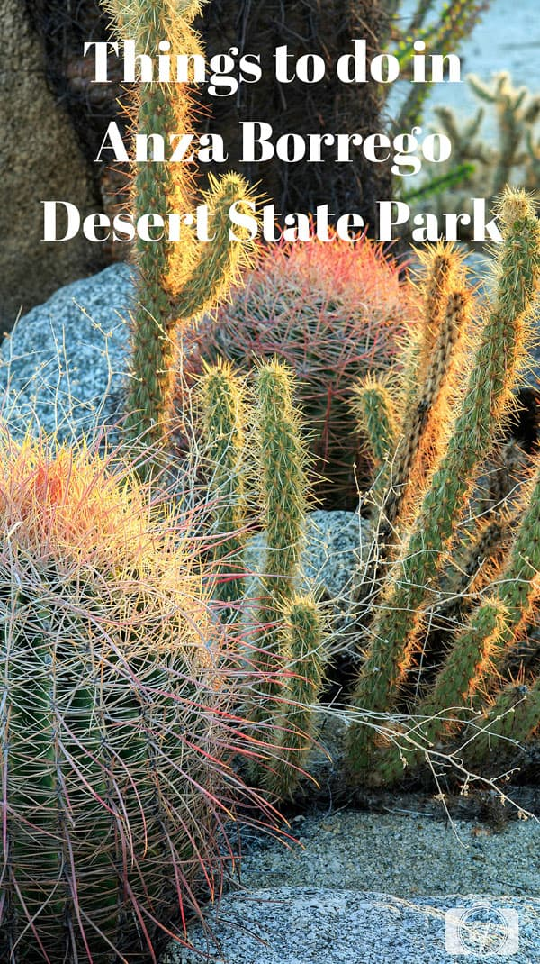 Things-to-do-in-Anza-Borrego-Desert-State-Park
