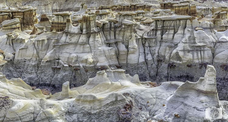 NEW MEXICO-Bisti-Hoodoos