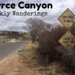Weekly Wanderings #11 – Bryce Canyon