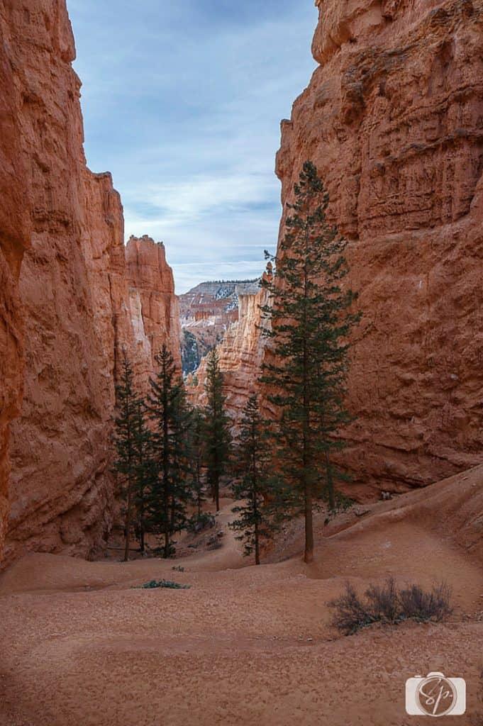 Bryce Canyon Navajo-Loop