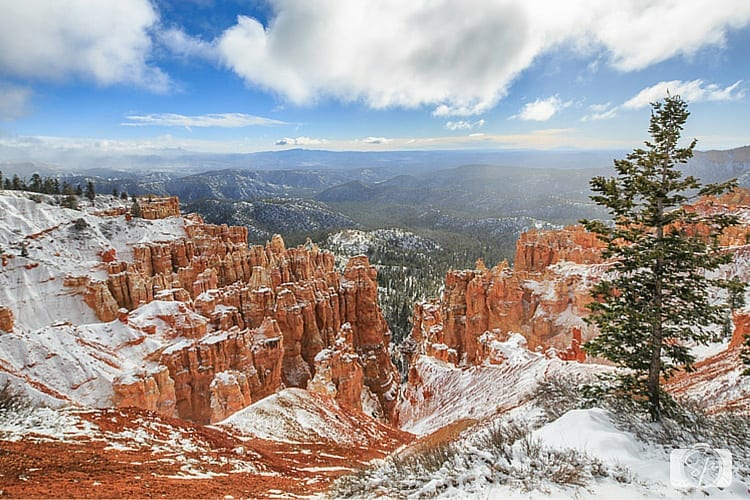 BRYCE CANYON-Rainbow-Point