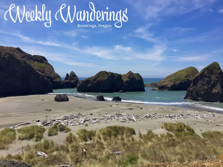Weekly-Wanderings-Brookings