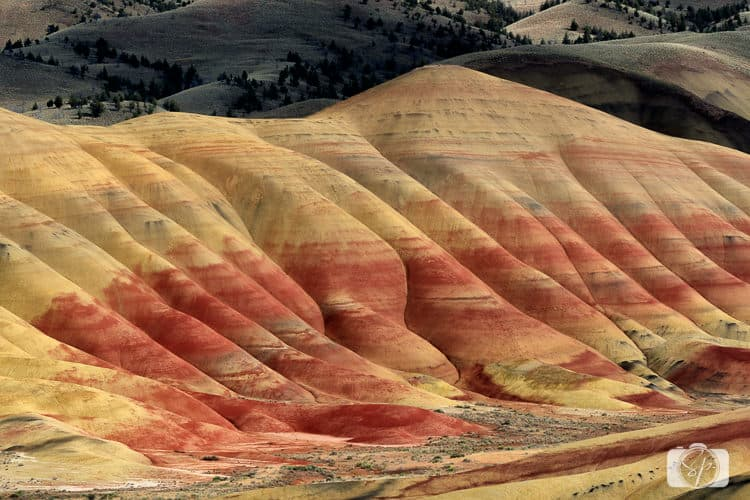 Central Oregon Painted Hills