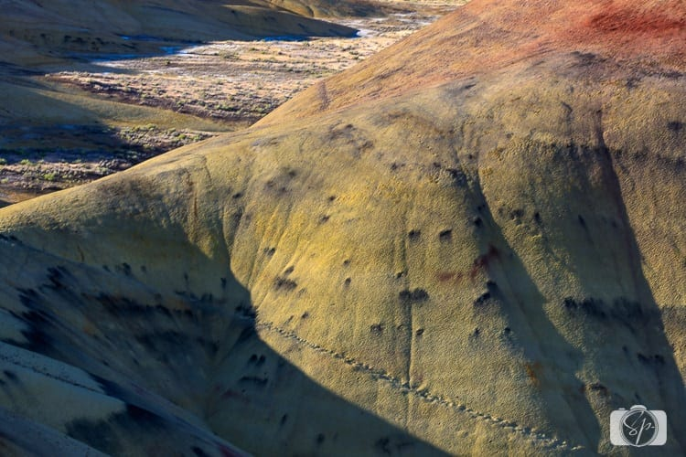 oregon painted hills footsteps