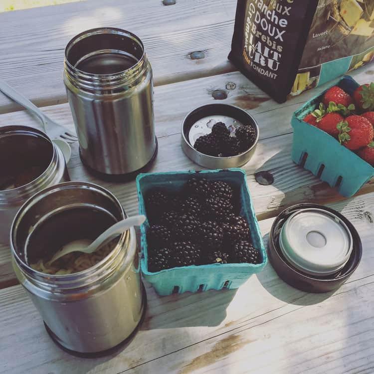 berry-picnic