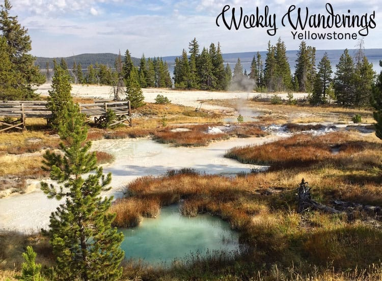 weekly-wanderings-yellowstone