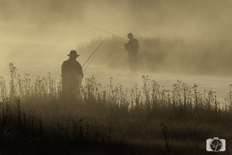 yellowstone national park fly fisherman