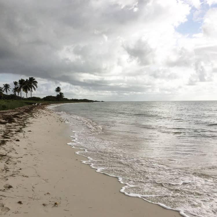 Beach at Bahia Honda State Park
