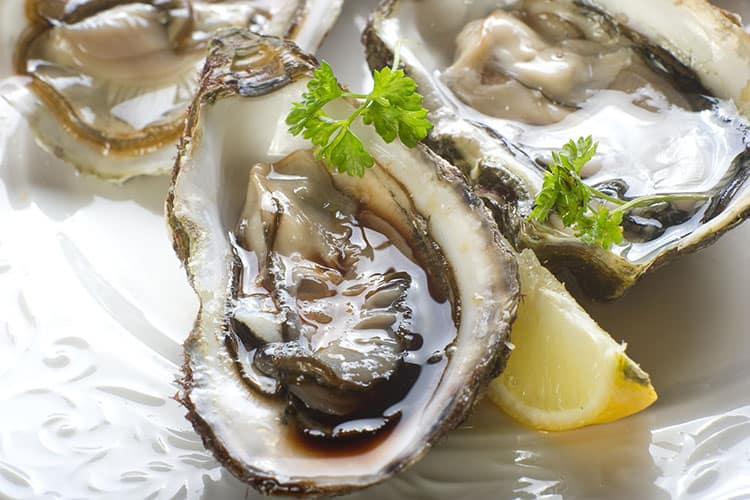 San-Francisco-Oysters