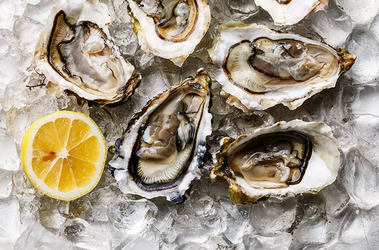 San Francisco for the Holidays - Oysters