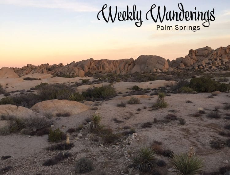 Weekly Wanderings Palm Springs