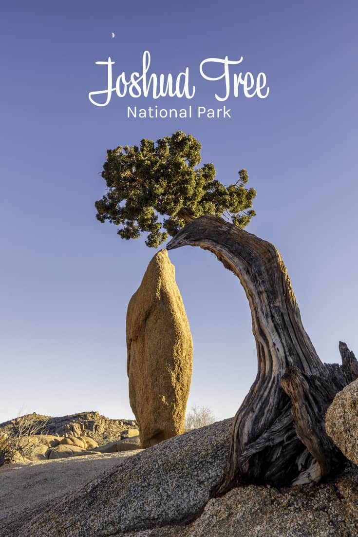 Joshua Tree National Park in California USA
