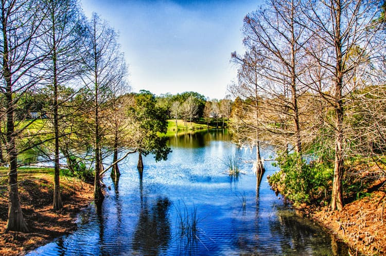 Orlando Travel Tips – 7 Places for Nature Lovers