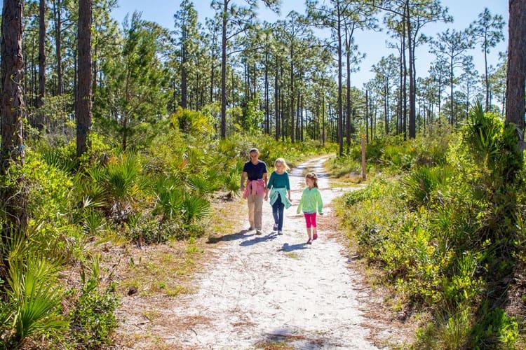 Orlando Travel Tips Nature - University of Central Florida Arboretum