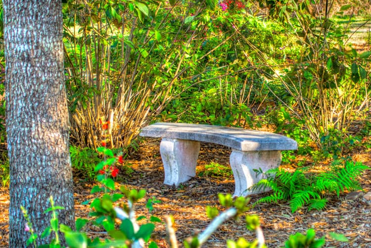 Orlando Travel Tips Nature