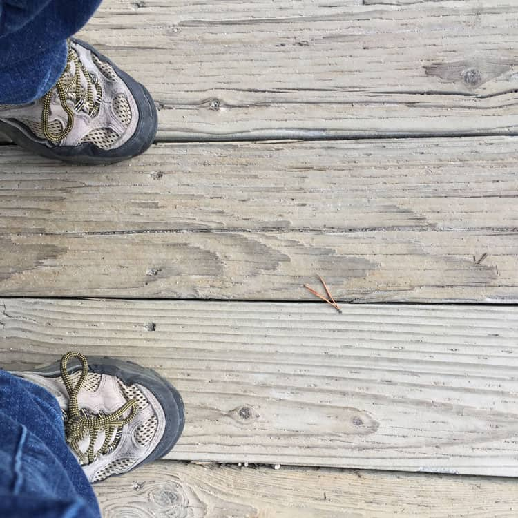 Merrell Moab Low Hiking Shoes