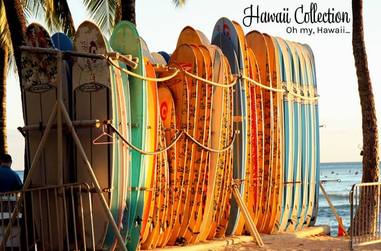 Hawaii Collection Oh My Hawaii