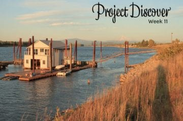 Project Discover Week 11