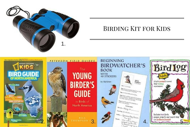 Birding Kit for Kids